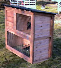 rabbit hutch penthouse with run