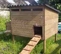 raised house for 3 - 20 chickens