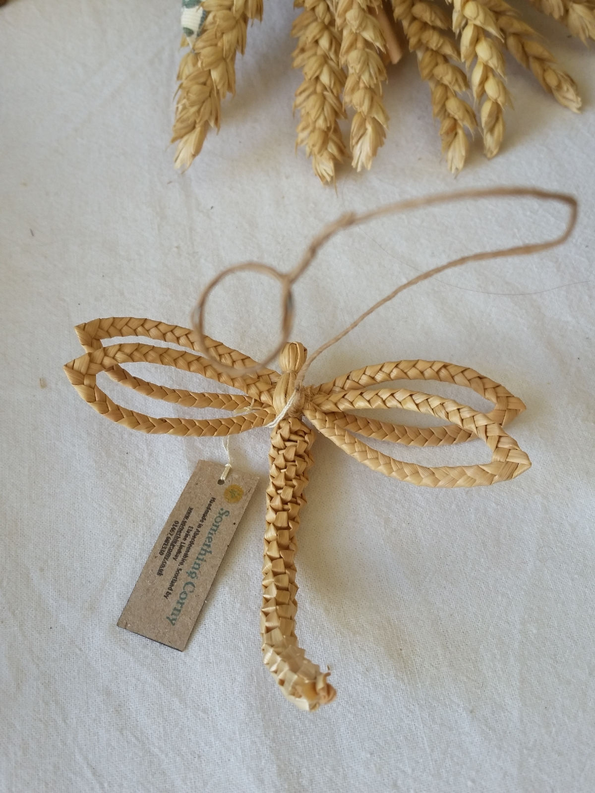 dragonfly corn 20170623_173407